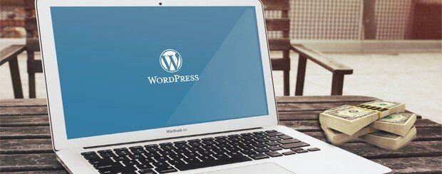 WordPress ile Para Kazanma Yolları 8