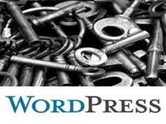 WordPress Admin Şifresini Unuttum - Sıfırlama