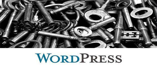 WordPress Admin Şifresi Unuttum 5
