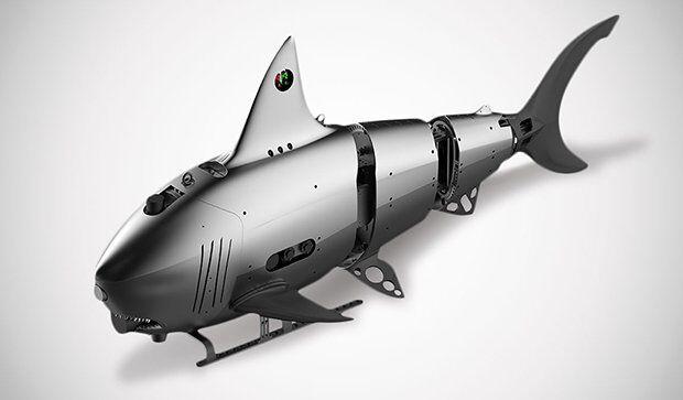 Köpek Balığını Taklit Eden Robot Robo-Shark