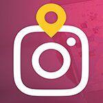 Instagram Organik Takipçi Kazanma
