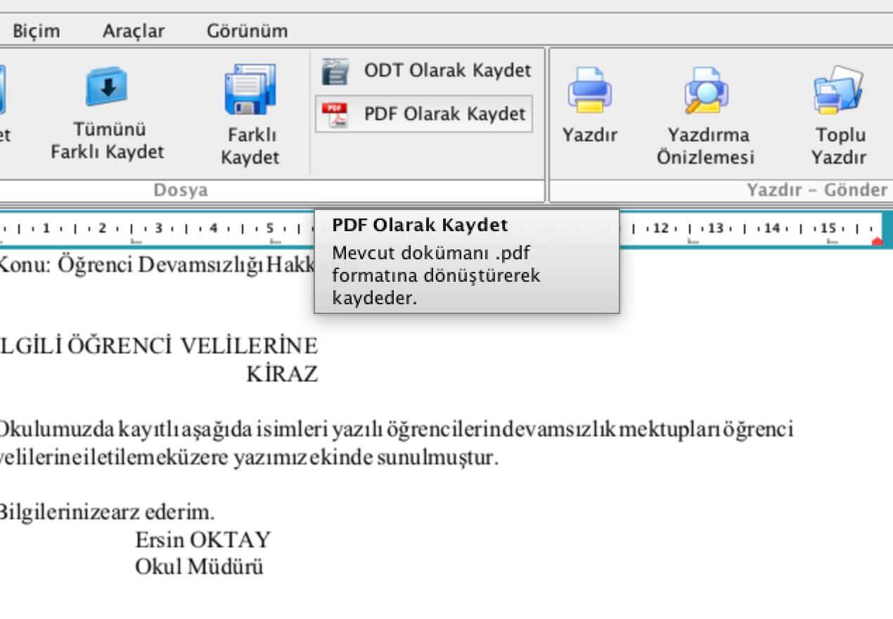 PDF Olarak Kaydet Adımı