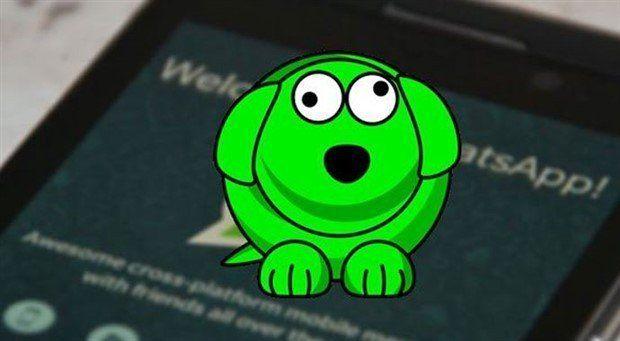 WhatsApp Kişi Takip, Güvenlik ve Özelleştirme Uygulamaları 1